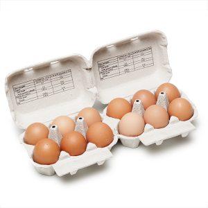 Huevos L